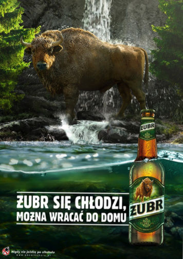 Summer's approaching, Żubrs's cooling down Żubr's new advertising campaign launched!